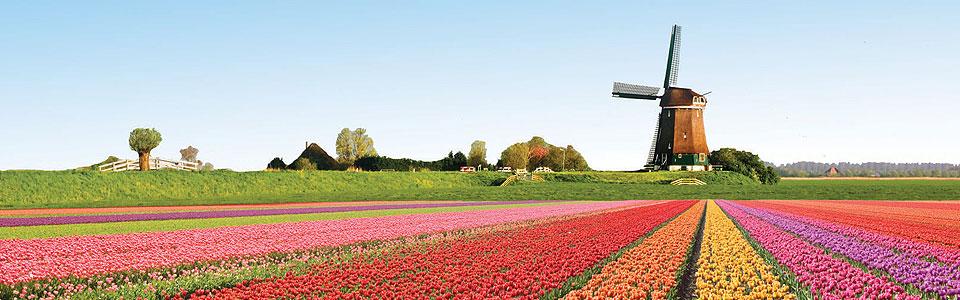 Buszos körutazások Hollandiában