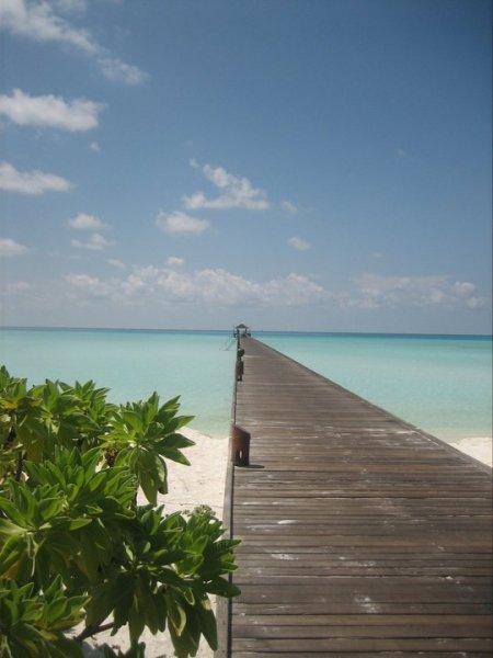A Maldív-szigetek egy igazi Paradicsom, egy trópusi szigetet jelent az óceánba nyúló pálmafákkal, fehér homokos parttal, gyönyörű, türkizszínű lagúnákkal, pompázatos vízi világgal, trópusi, buja növényzettel... Aki a paradicsomot érintetlen trópusi szigetként képzeli el hajladozó pálmafákkal, fehér homokkal borított strandokkal és türkizkék lagúnákkal, azt a Maldív-szigeteken nem éri csalódás. Ismerje meg e valóban természeti csodákkal bíró ország fő vonzerejét, a gazdag tengeri élővilágot, élvezze a gondtalan kikapcsolódást és pihenést.