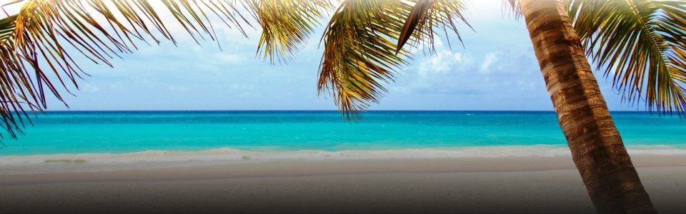 a legjobb módja annak, hogy csatlakozzon nyaralni