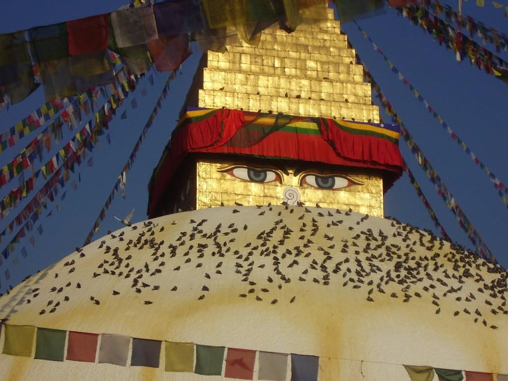 Gyalogtúrára indulunk a káprázatos Annapurna-régióba a Himalája hófedte csúcsai között, célunk az Annapurna régió titokzatos ösvényeinek bejárása. 12 nap alatt megkerüljük az Annapurna óriási tömbjét, többnyire gyalogosan. A hegyi túra mellett kulturális látnivalók is várnak ránk Pokharában és a Kathmandu-völgyben. Pewa-tó, Világbéke sztúpa, Patan, Bakhtapur, Swayanbunat sztúpa, Bodhanat sztúpa. Irány a Himalája!