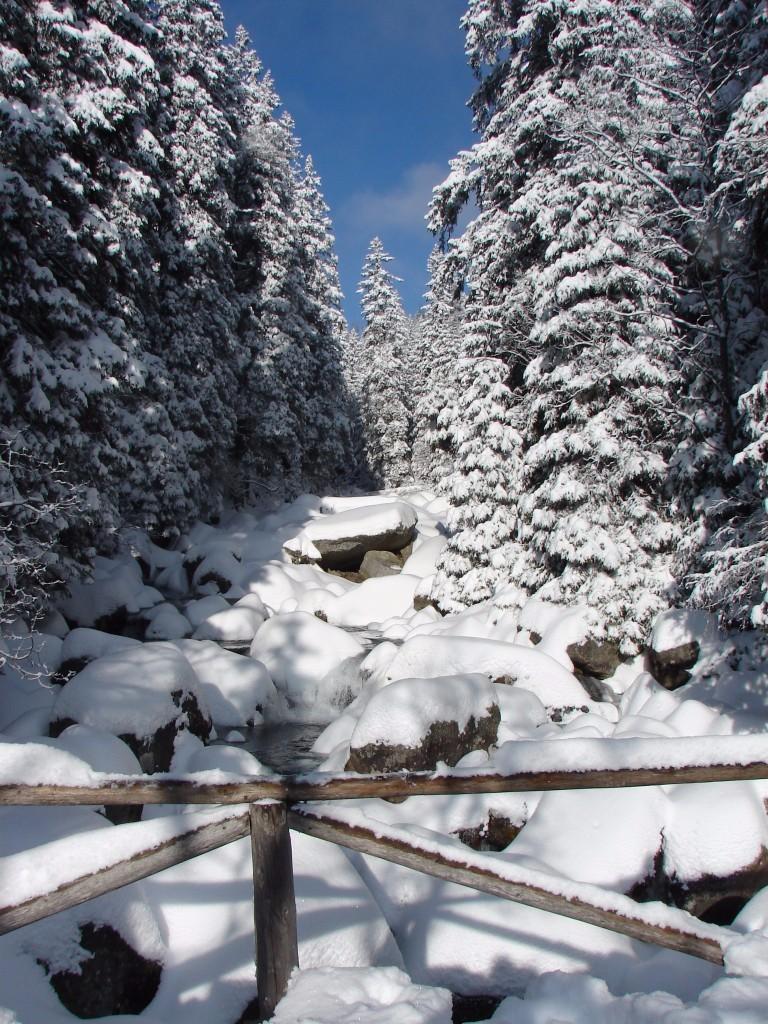 Havas fenyvesek, 2000 méter fölé nyúló hófödte hegycsúcsok, alattuk téli álmukat alvó mély völgyek, téli arcukat mutató hatalmas tengerszemek, szarlotkát és forralt bort kínáló hangulatos menedékházak. Ugye csábító ajánlat? Akinek mindez nem elég, annak a túrák után esti séta Zakopane sétálóutcájában, a mindig turistáktól nyüzsgő Krupówkin. Ezzel a programmal várjuk a téli Tátra szerelmeseit ezen a hosszú hétvégén, gyere velünk Lengyelország téli fővárosába, a vendégszeretetükről híres góralok hazájába!