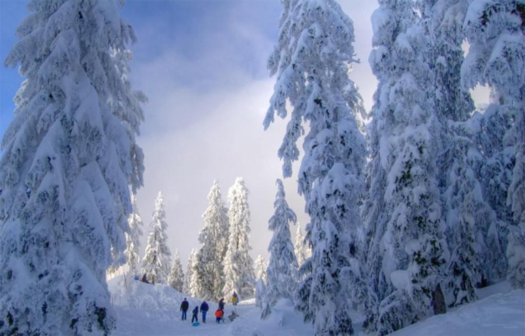Igazi téli élmény hóval borított alpesi réteken, behavazott fenyveseken keresztül, ahol mindenki belekóstolhat a téli túrázás örömeibe.A könnyű biztonságos terep, a táj szépsége biztosítja a teljes kikapcsolódást mindenki számára.  A hótalp egy olyan téli felszerelés amely nagy hóban könnyebbé teszi a mozgást,  bármilyen bakancsra felrögzíthető és  használata mindenki számára rövid idő alatt elsajátítható.