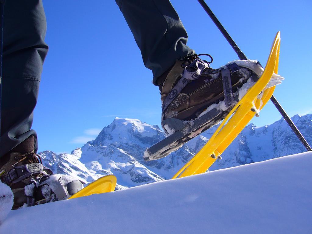Ausztria e kevésbé ismert, ám annál szebb vidékékére utazunk. Behavazott fenyvesekben barangolunk, hóval borított hegyoldalakat járunk be. Túránkon megismerkedhetünk a hótalpak használatával, a téli kirándulás szabályaival, gyönyörködhetünk a téli alpesi tájban.  A hótalp egy olyan téli felszerelés amely nagy hóban könnyebbé teszi a mozgást,  bármilyen bakancsra felrögzíthető és  használata mindenki számára rövid idő alatt elsajátítható.