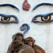 India Arany Háromszög körutazás Nepál ízelítővel