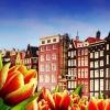 Városlátogatások Amszterdamban