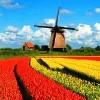 Benelux Körutazás - Tulipánok Országa Hollandia