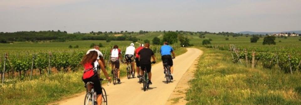 Ferto To Kerekpartura Messzi Tajak Ausztria Biciklitura Utazom