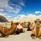 Marokkó csúcsmászás, Toubkal (4167 méter)