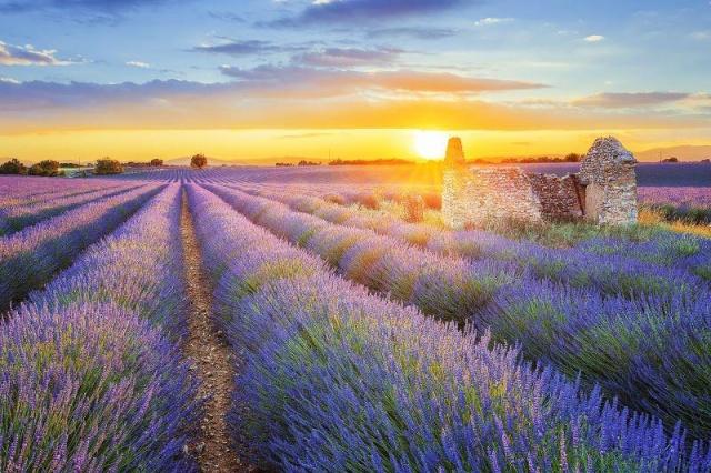 Romantikus Provence, kis svájci kitérővel