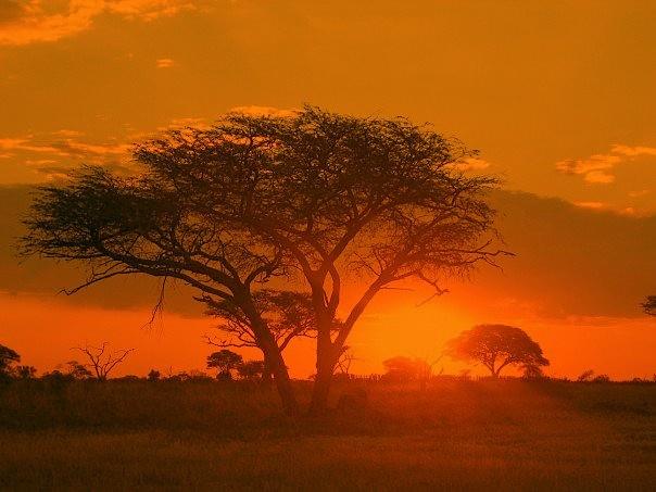 Óriáskörút Dél-Afrikában