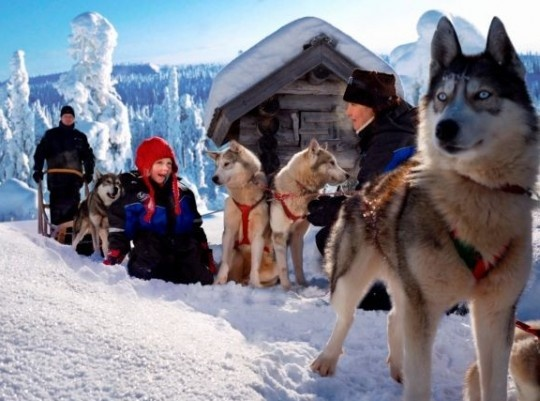 Téli kalandok finn Lappföldön haladóknak 2022.02.11-15.