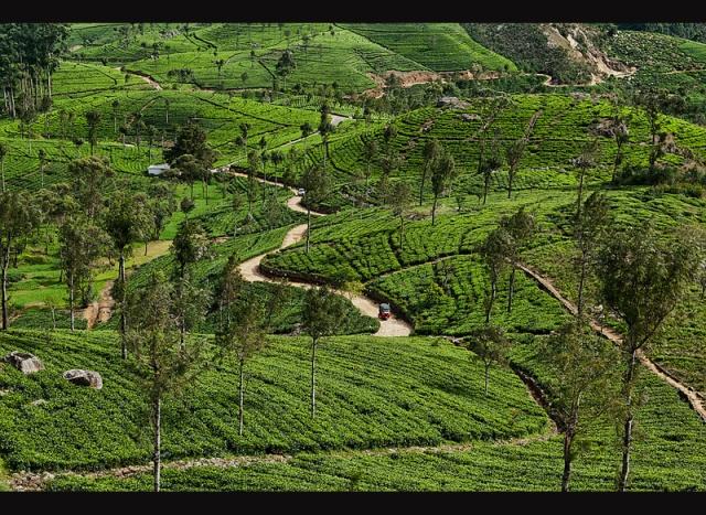 Dél-India és Sri Lanka körutazás