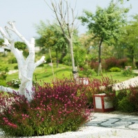 Hotel Sentido Flora Garden ***** Side