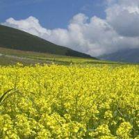 Toszkána és Itália zöld szíve Umbria