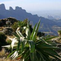 Etiópia Körutazás Etiópiában