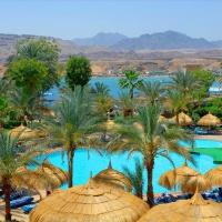Hotel Pickalbatros Beach Albatros **** Sharm El Sheikh
