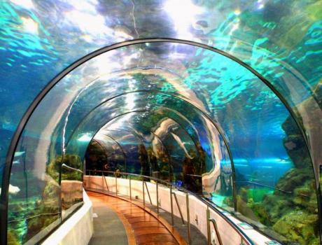 Barcelona v rosl togat s budapest barcelona 4 napos for Aquarium de barcelona