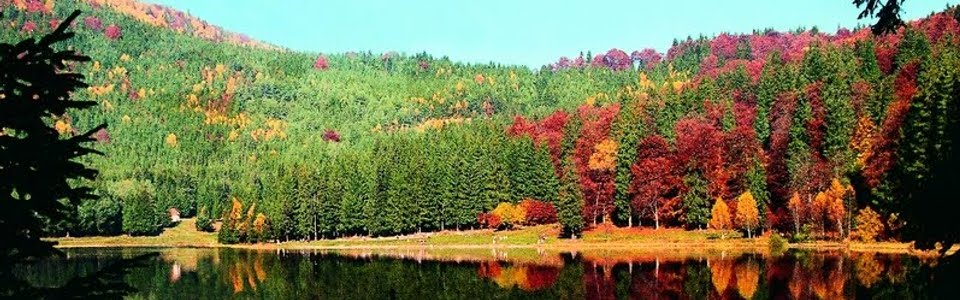 A Hargita vadregényes tájain (Király-hágó, Békás-szoros, Gyilkos-tó)