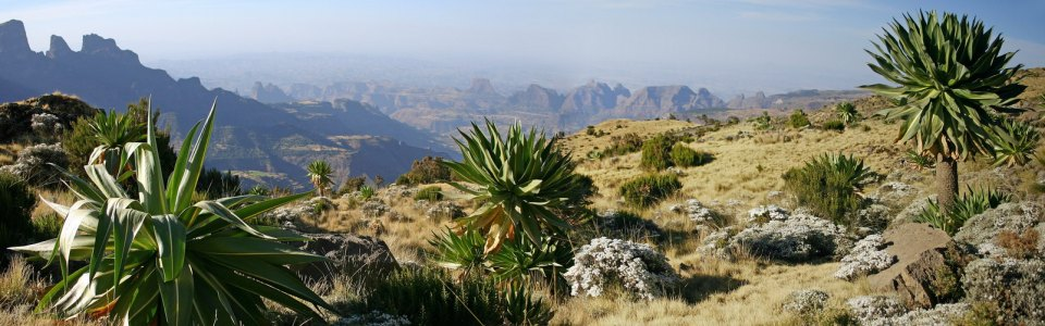 Etiópia 12 napos körutazás Etiópiában
