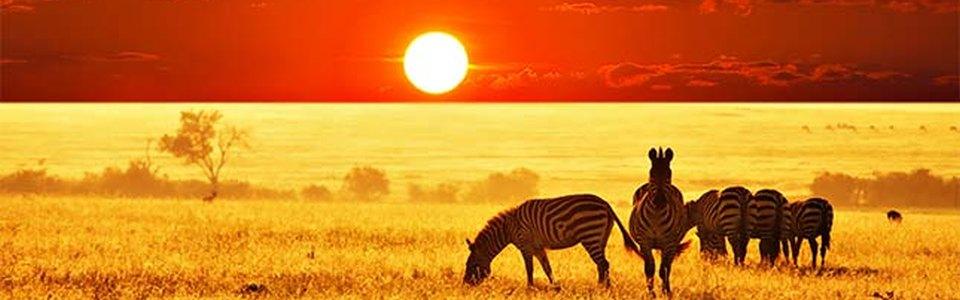 Online társkereső zimbabweiak számára